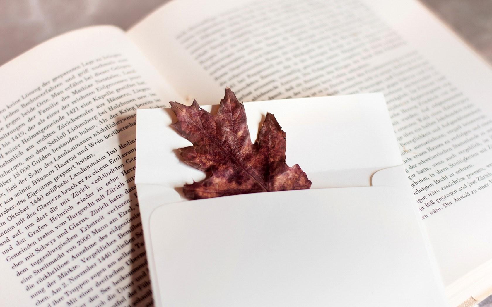 autumn wallpaper book