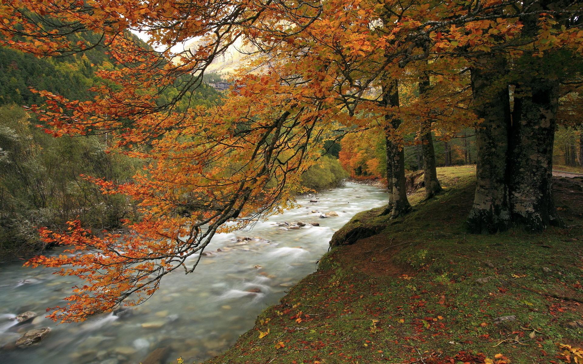 autumn wallpaper river