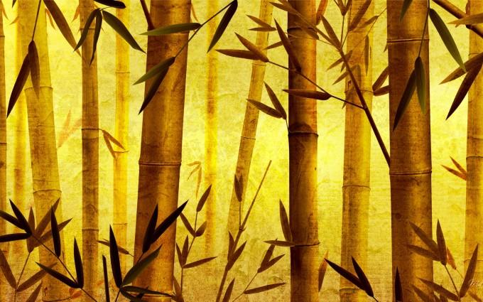 bamboo wallpaper background