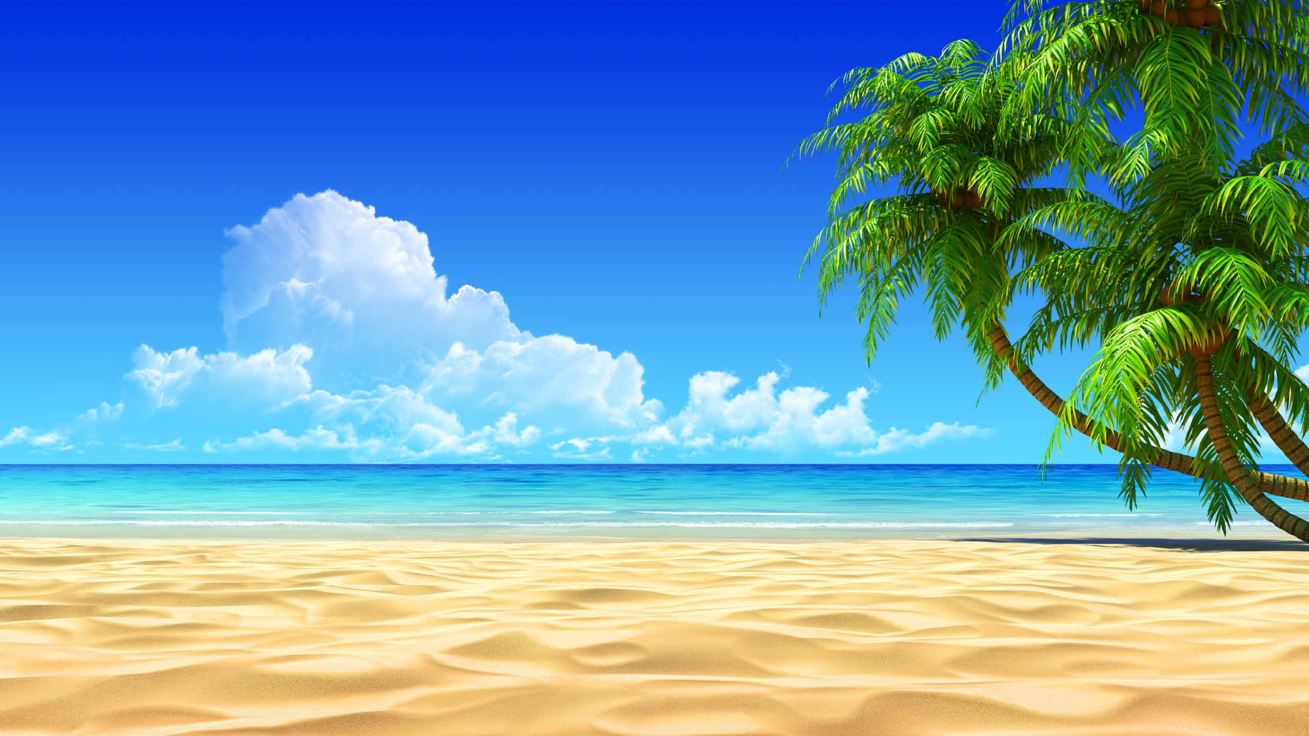beach wallpaper A1