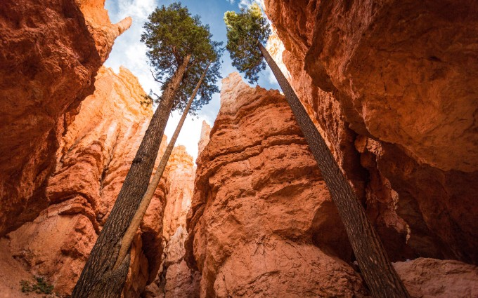 beautiful canyon wallpaper