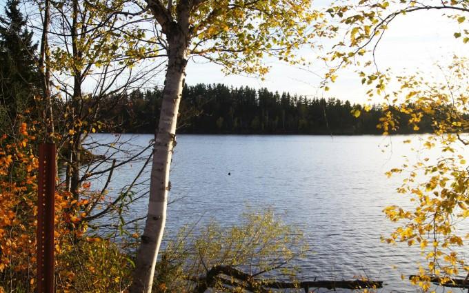 beautiful wallpaper lake