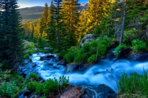 beautiful wallpaper nature stream