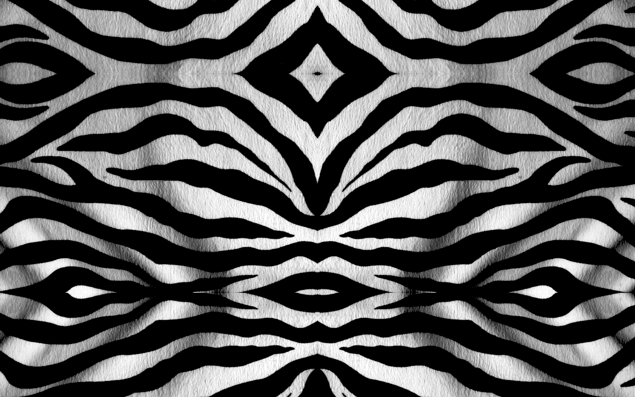 black and white zebra print wallpaper - HD Desktop ...