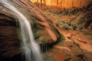 canyon images cool