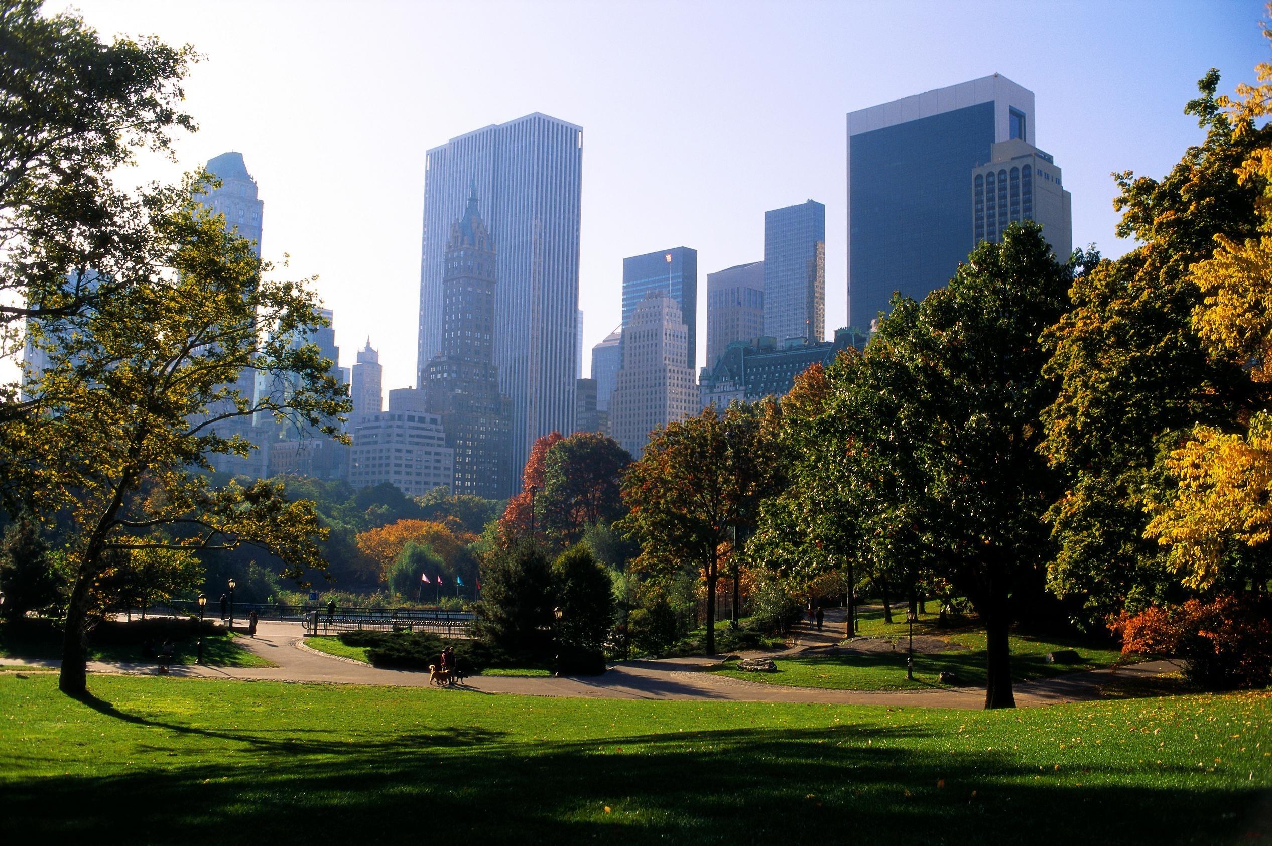 central park wallpaper city
