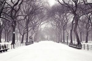 central park wallpaper snow