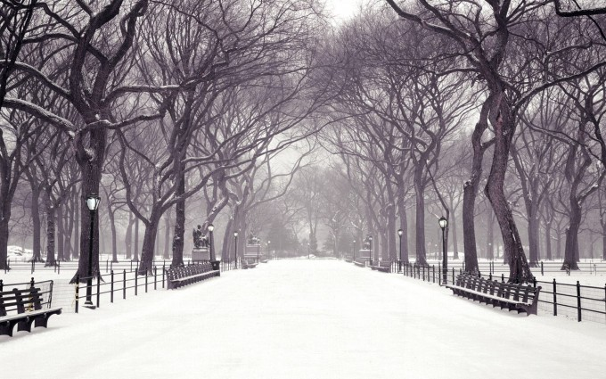 central park wallpaper snow