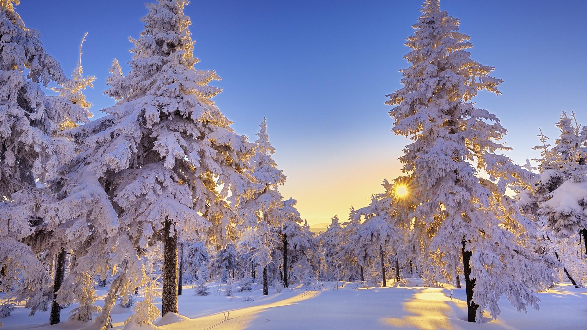 christmas snow wallpaper