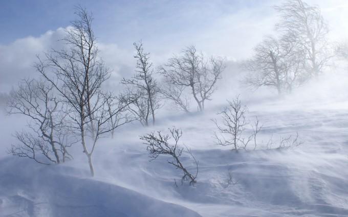 cold wallpaper snow