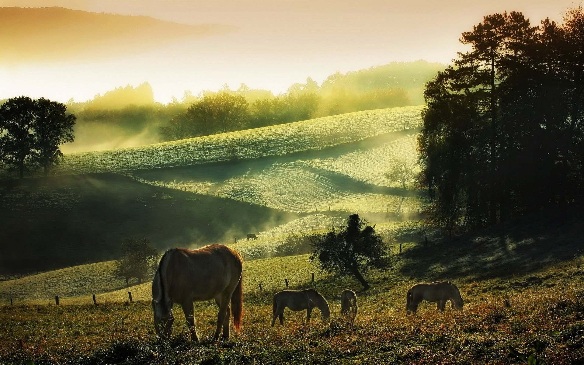 countryside wallpapers