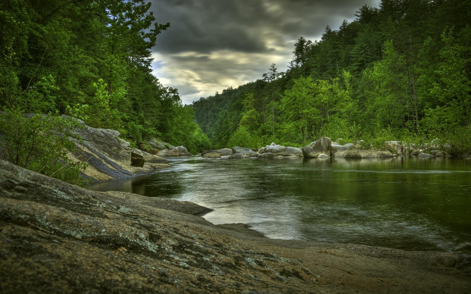 creek landscape