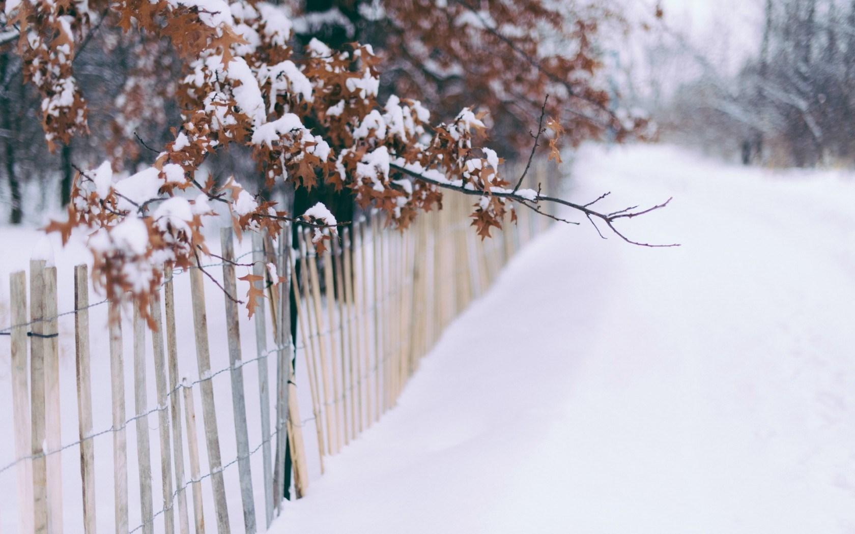 desktop backgrounds for winter