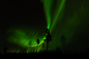 fantastic polar lights