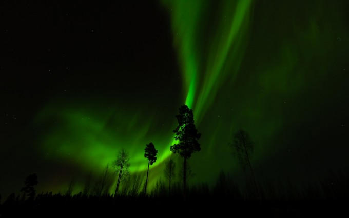 fantastic polar lights