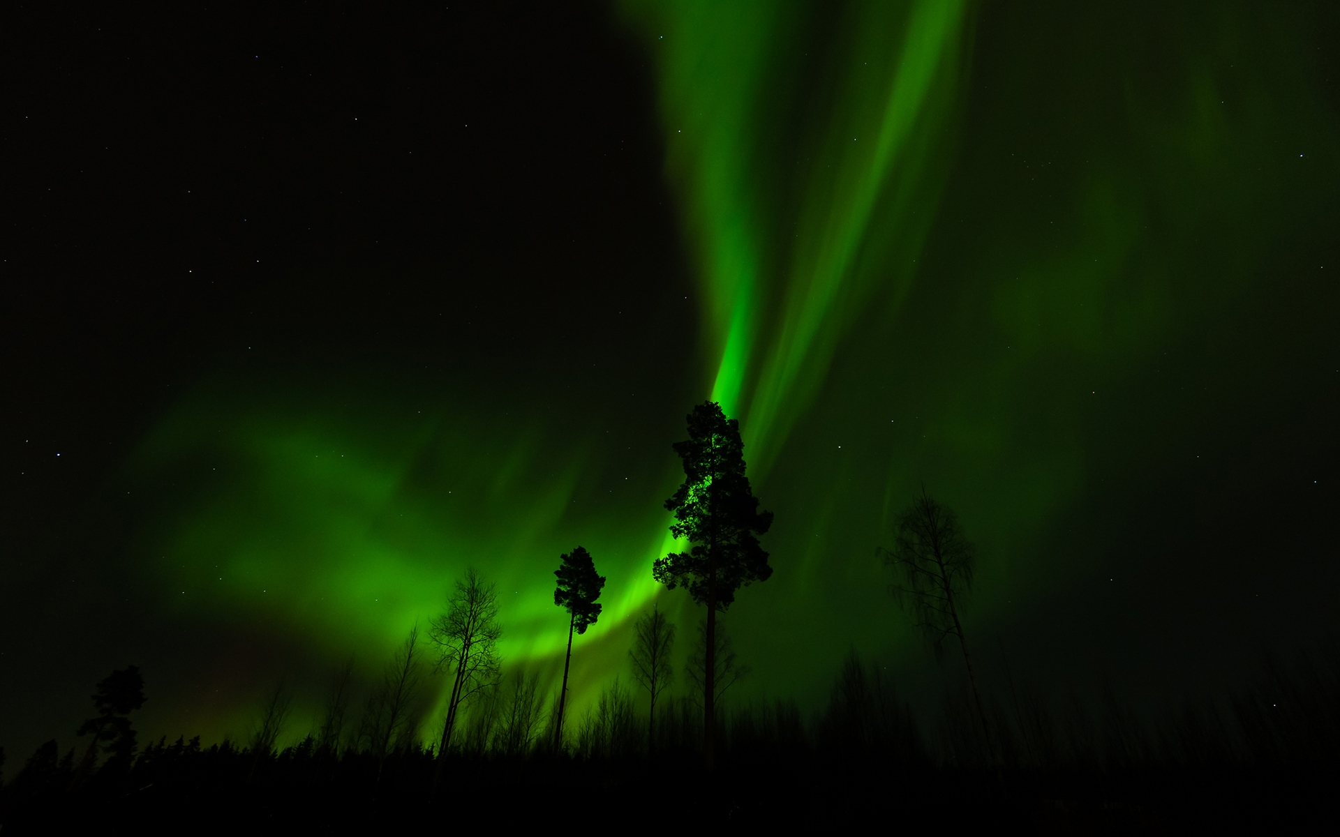 the fantastic show of the northern lights Our best northern lights holidays find here our great selection of northern lights holidays our northern lights tours and packages offer an incredible winter holiday, where you can combine hunting for the elusive aurora borealis with a range of fantastic winter activities and excursions into icelandic nature.
