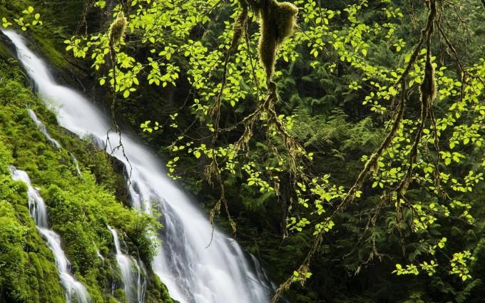fantastic waterfall hd