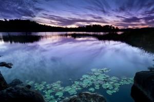 fantastic zen images