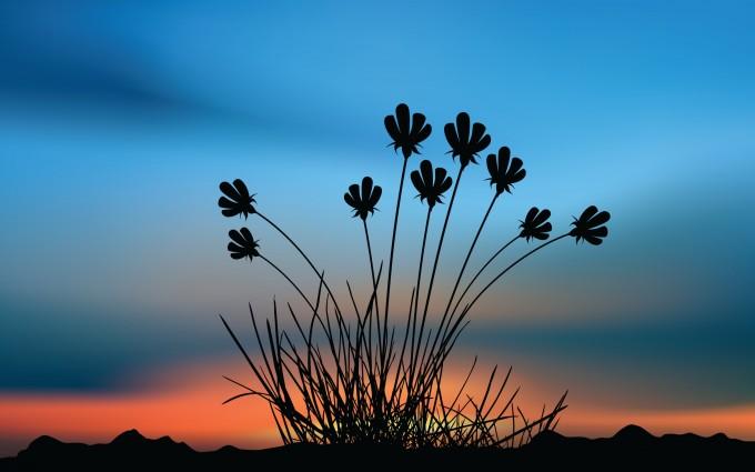 flowers sunset shape
