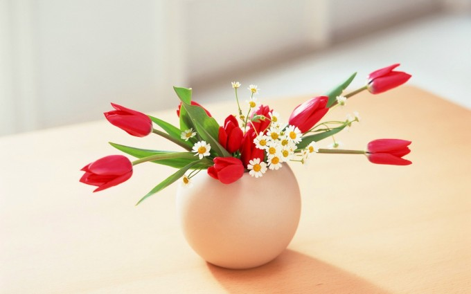 flowers vase wallpaper