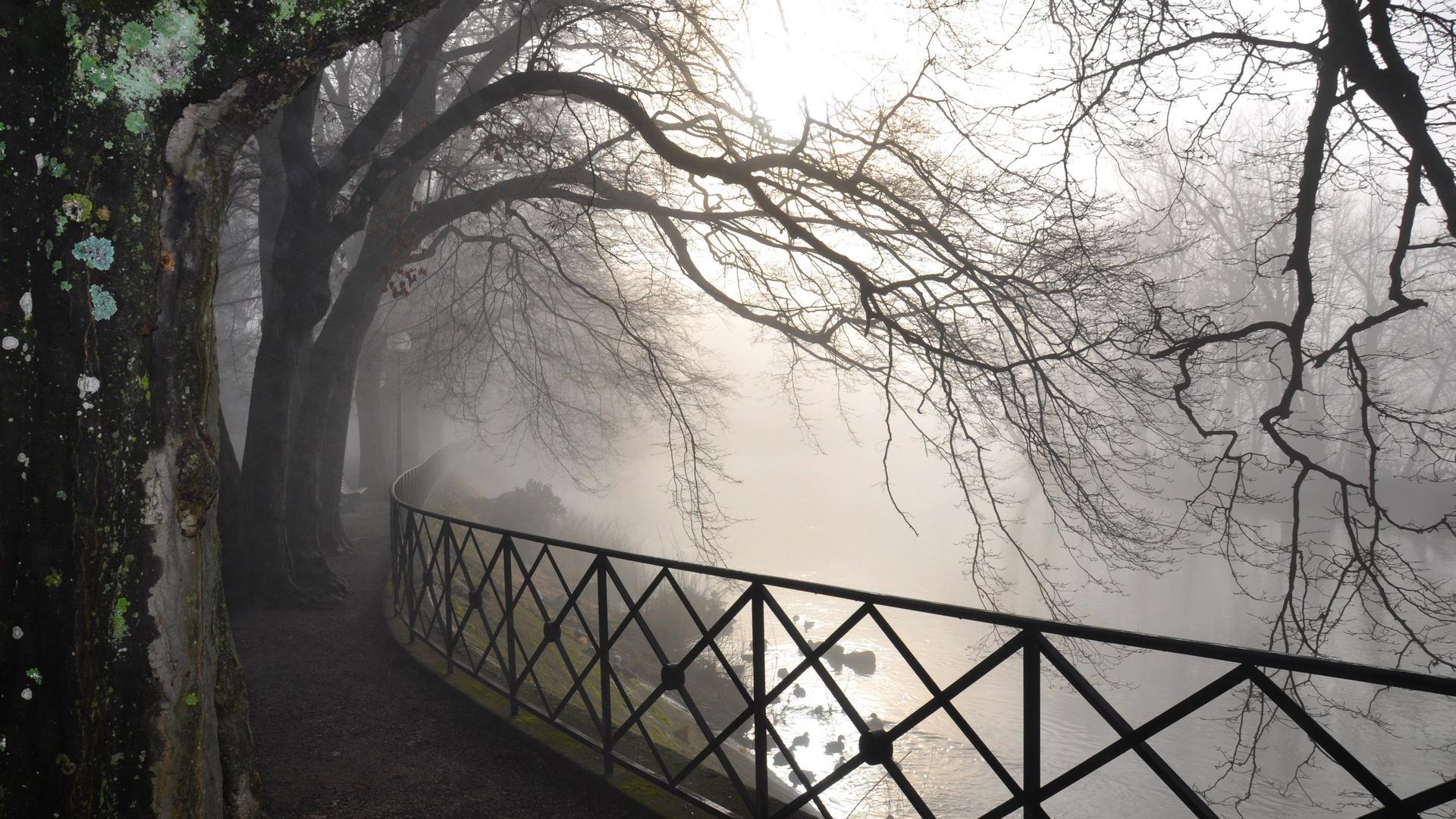 fog desktop wallpapers