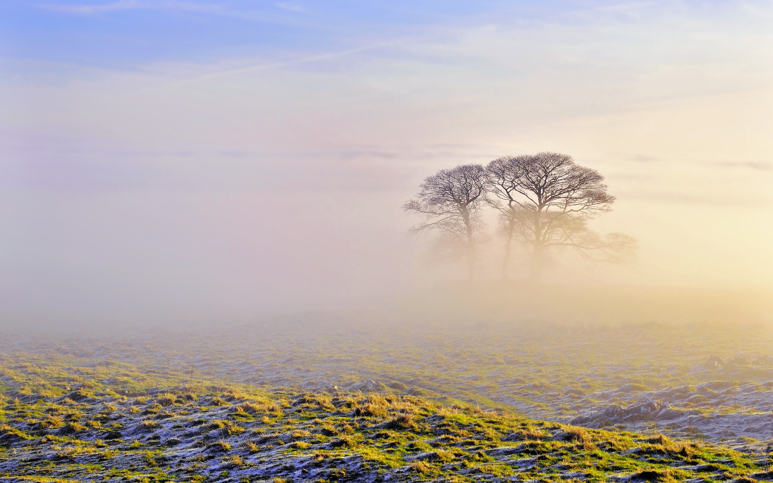 fog scenery images