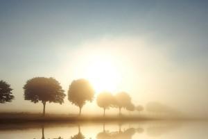 fog wallpaper scenery