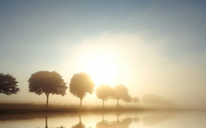 fog wallpaper scenery