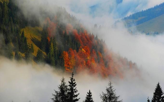 foggy landscape wallpaper