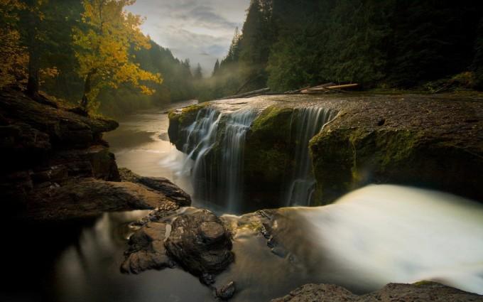 forest wallpaper waterfalls