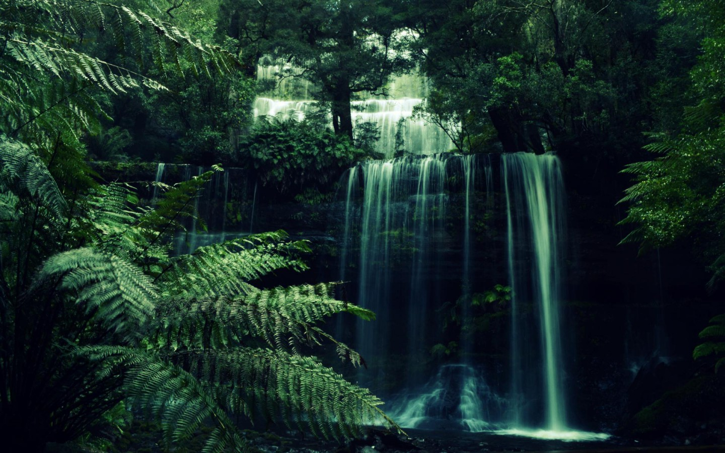 forest waterfall pictures