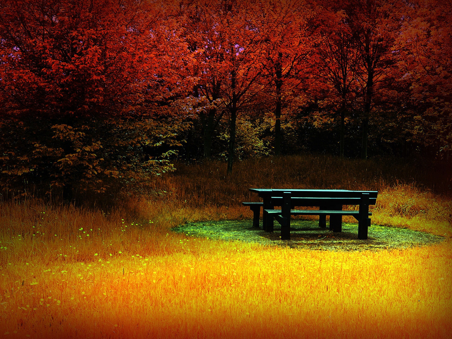 free autumn images