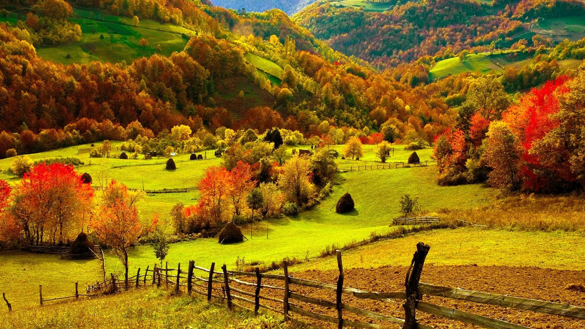 free autumn wallpaper backgrounds - HD Desktop Wallpapers ...