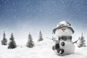 free hd winter wallpaper