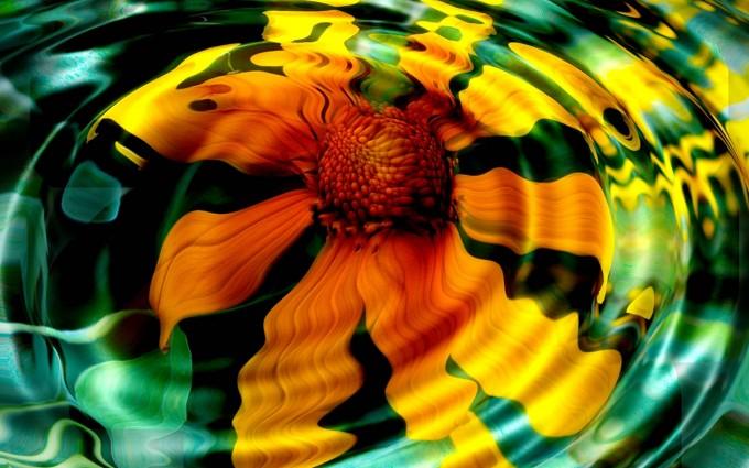 free wallpaper flower hd