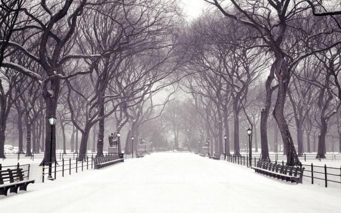 free wallpaper winter scenes