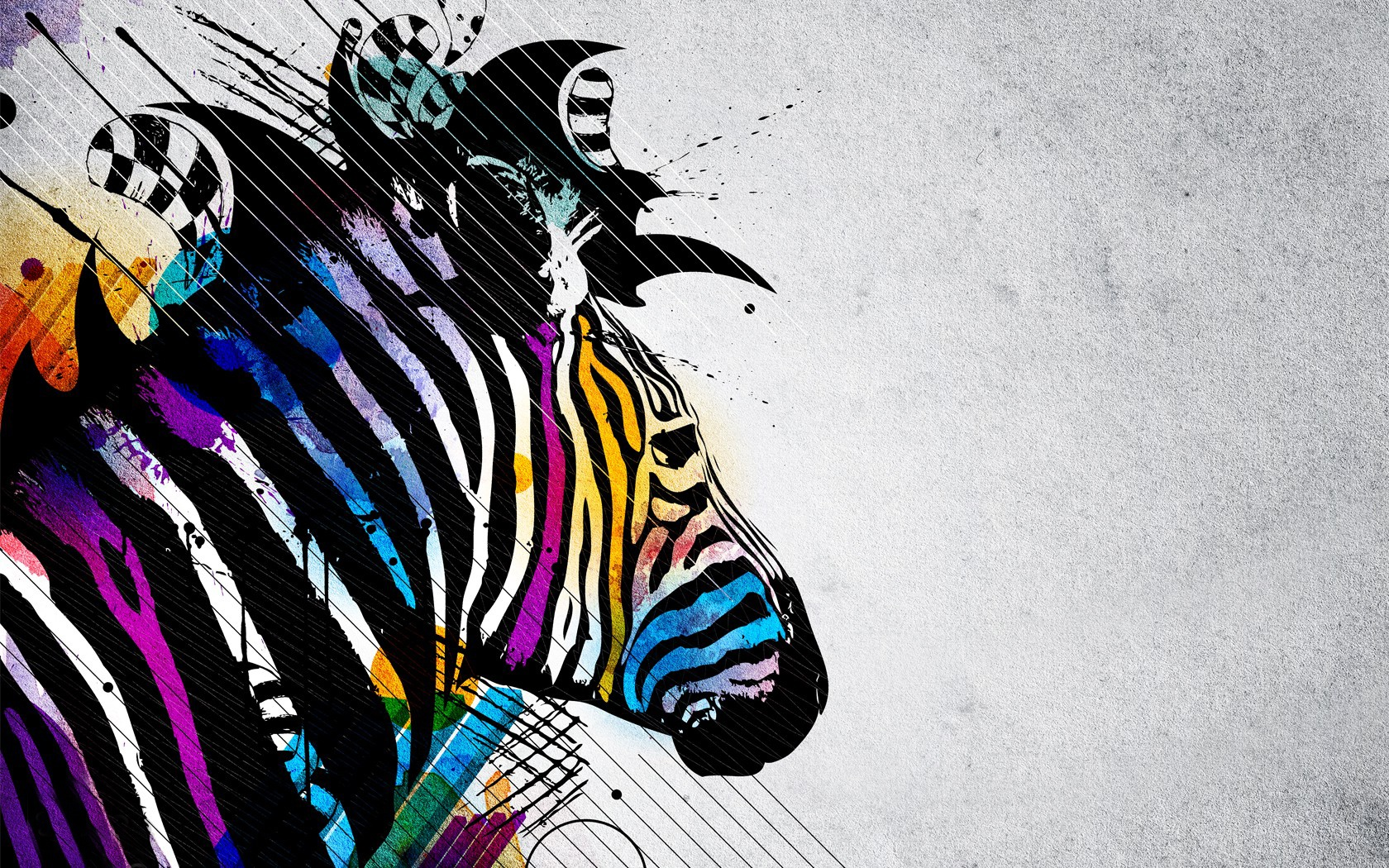 free wallpaper zebras