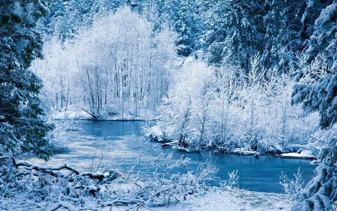 free winter scene wallpaper