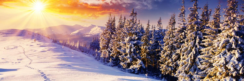 Wallpaper Name : free winter screensavers wallpaper