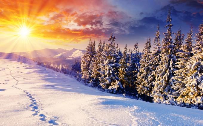 free winter screensavers wallpaper - Wallpaper