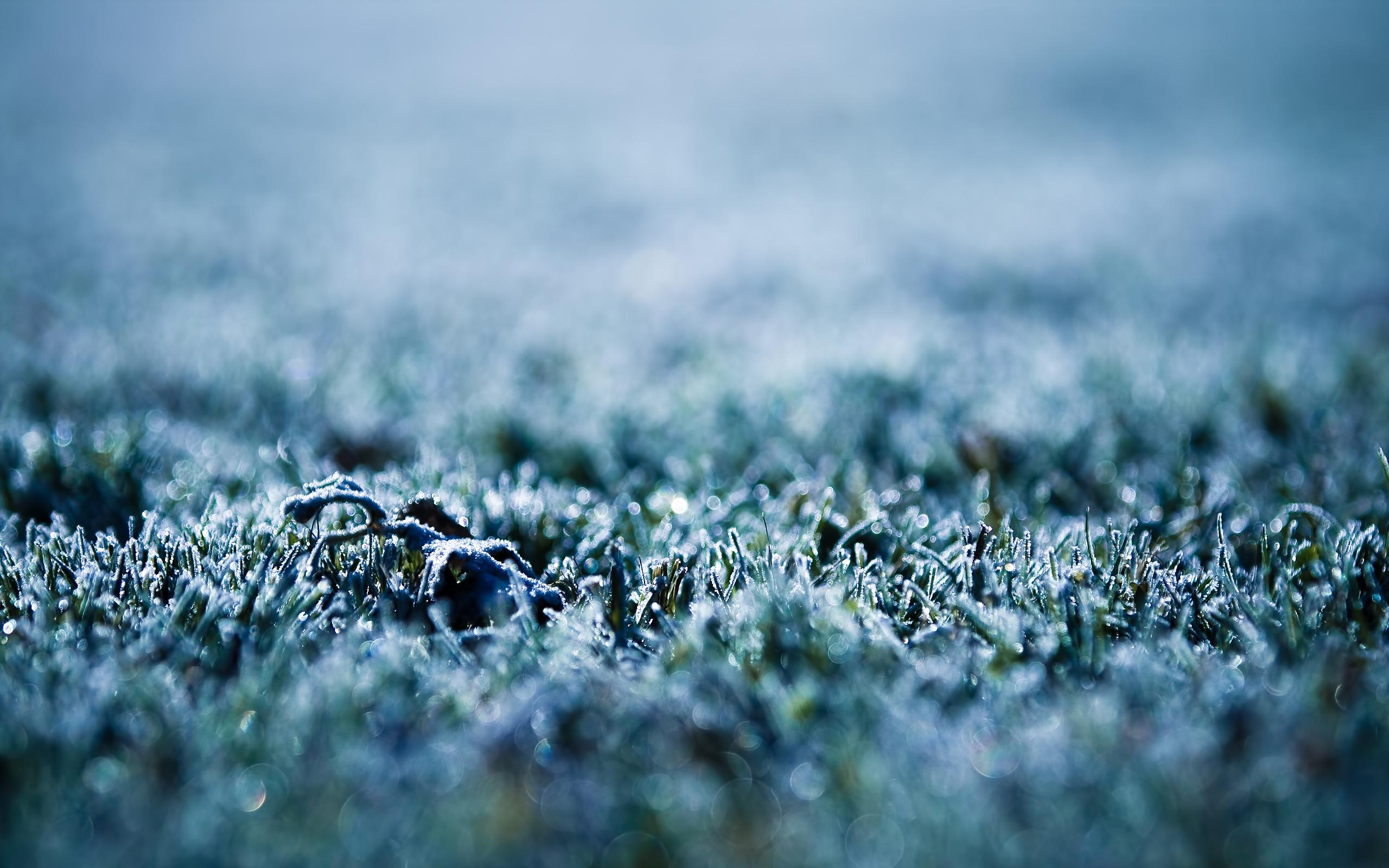 frost wallpaper macro