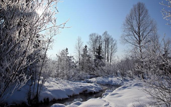 frost wallpaper russia