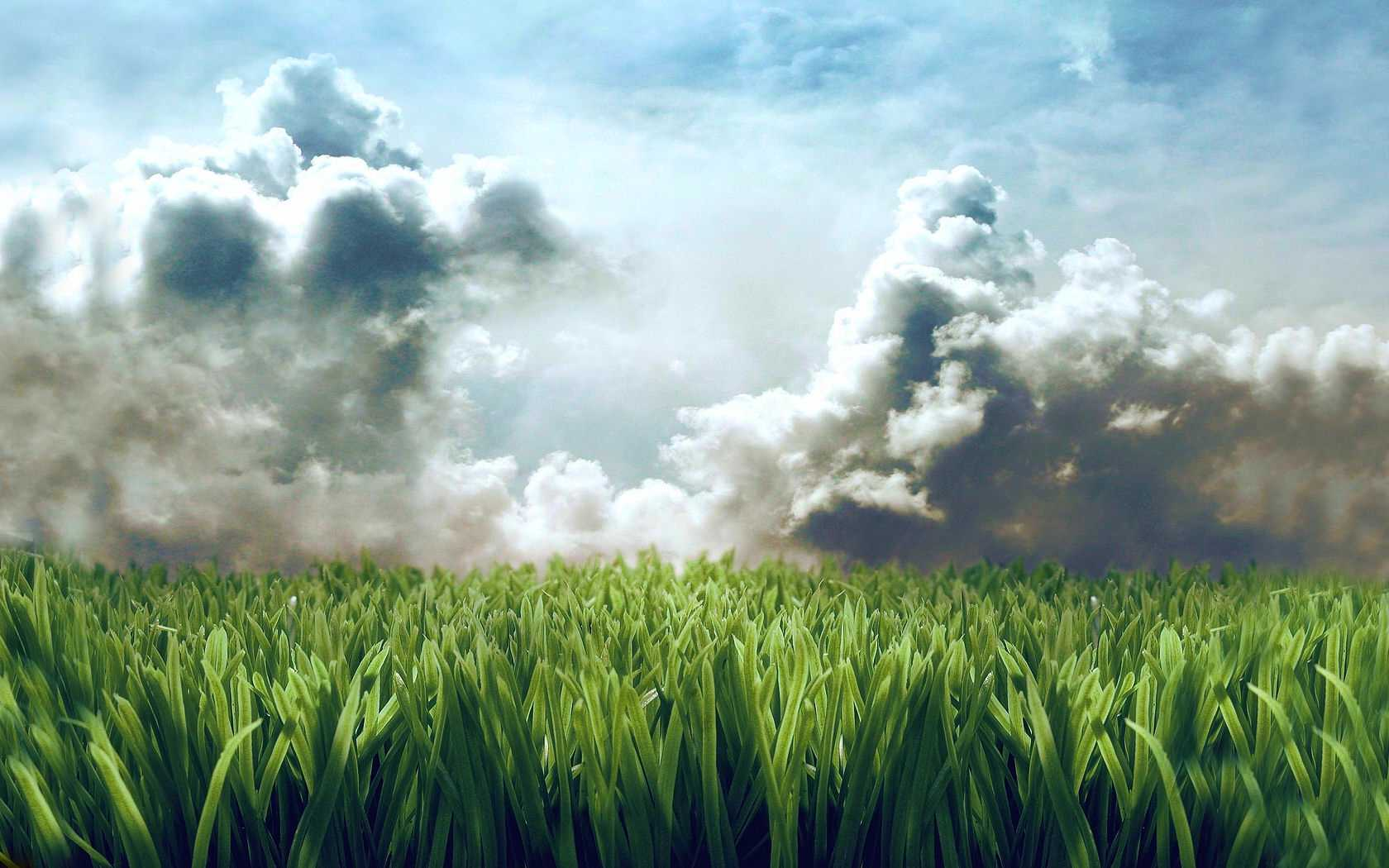 grass wallpaper clouds