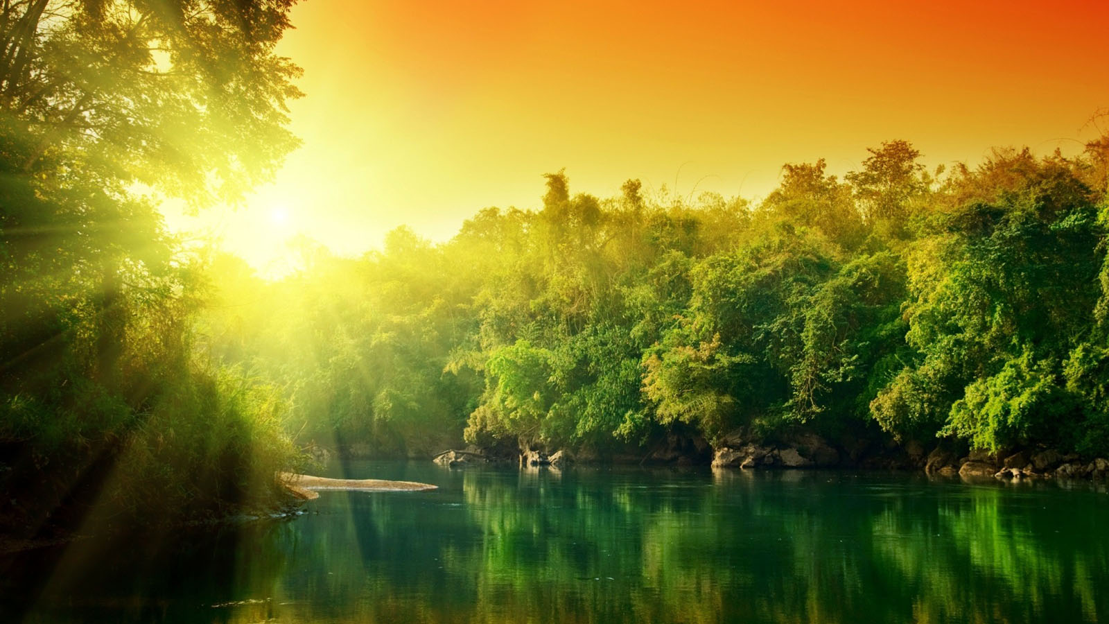 green forest wallpapers hd