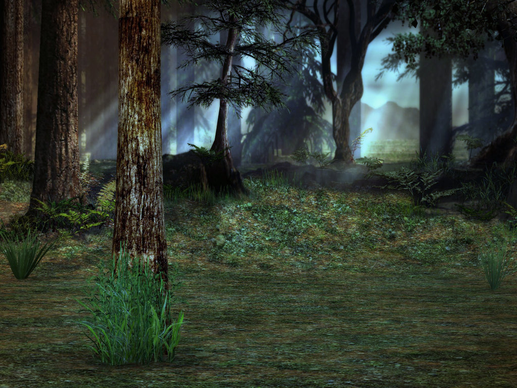 green forest wallpapers hd2