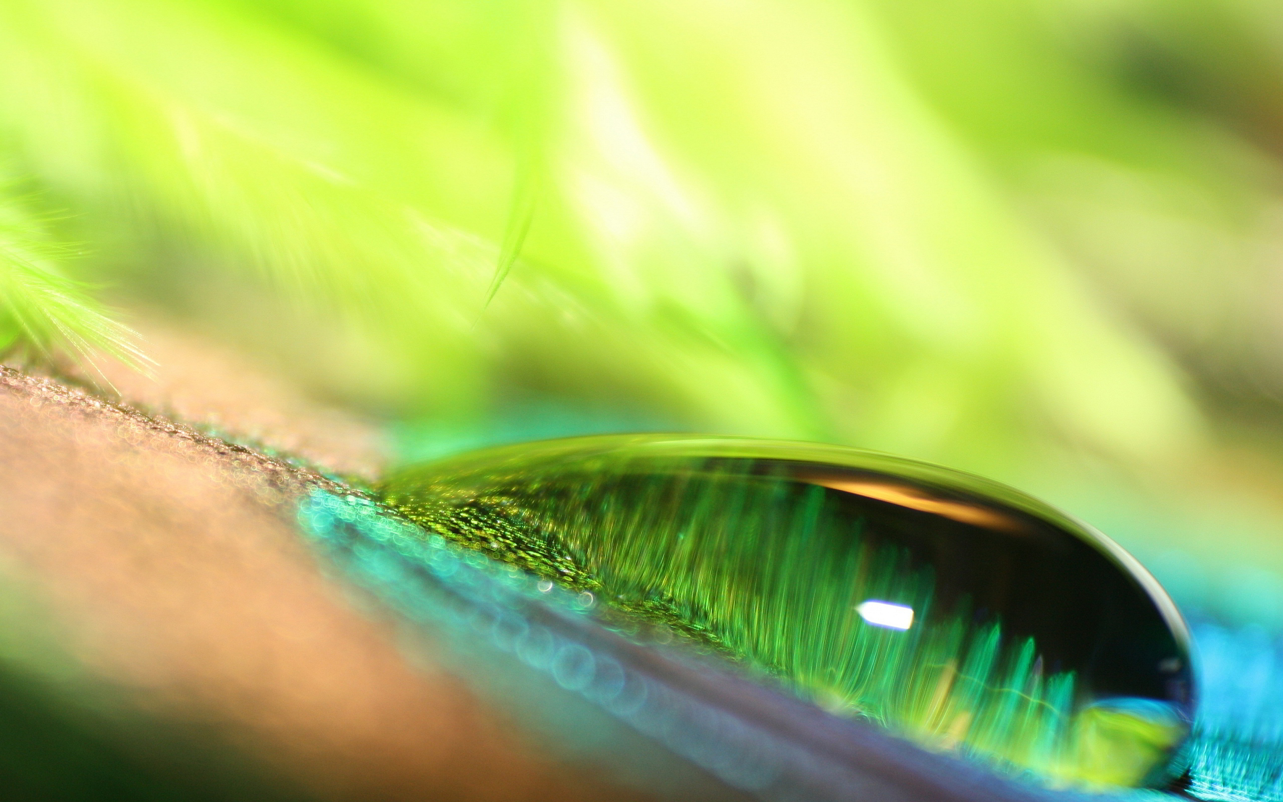 green water dew drop