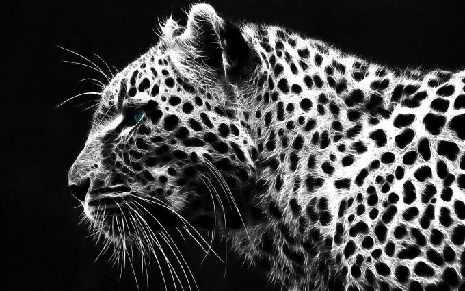 grey leopard print wallpaper