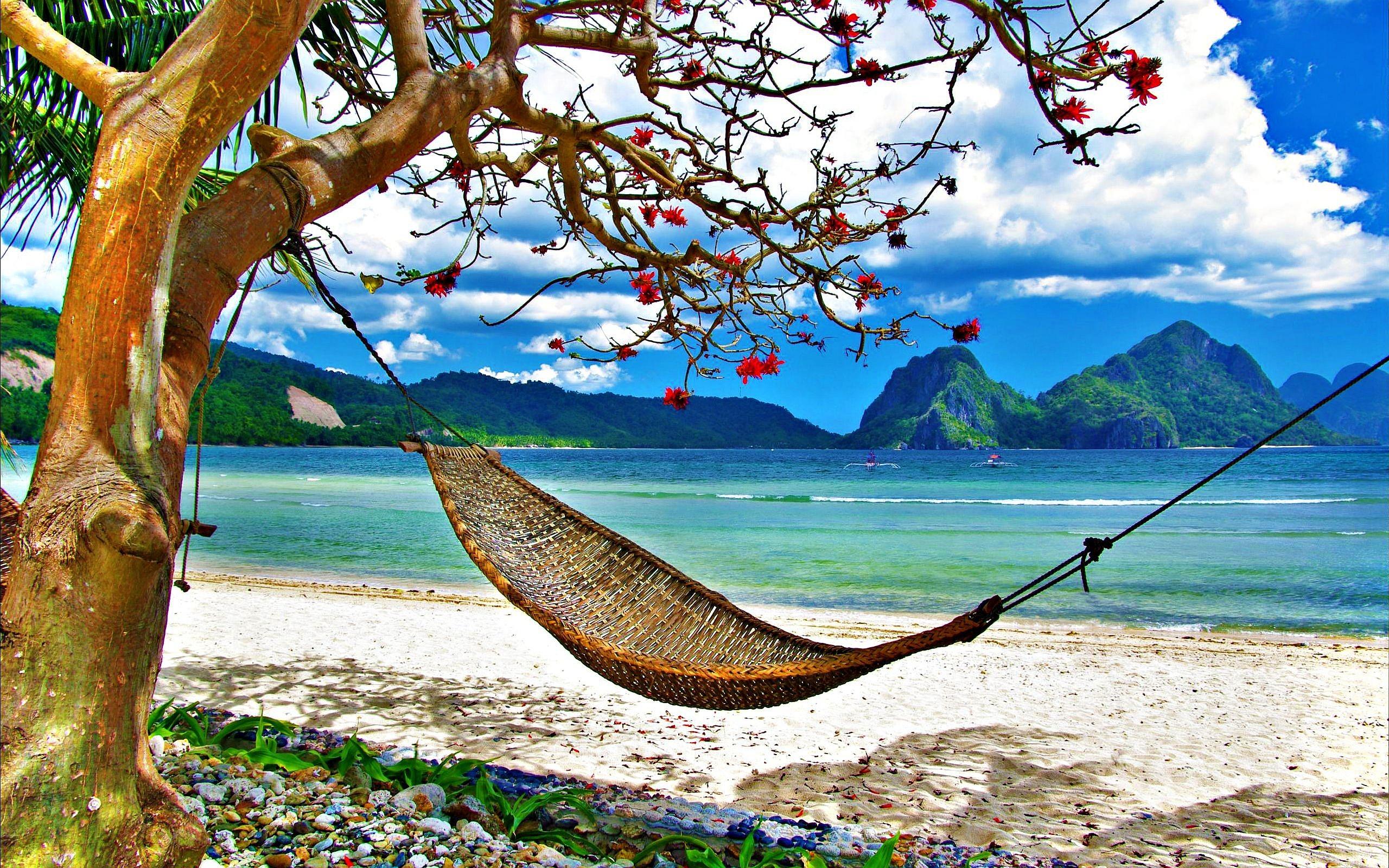 hammock beach hd