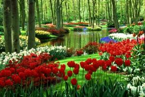 hd garden wallpapers natural