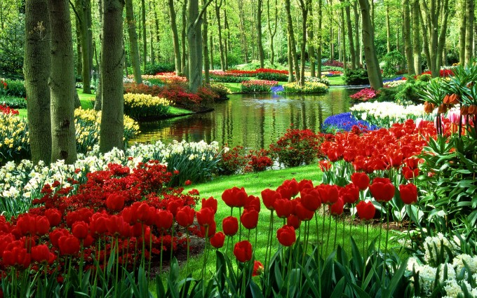 hd garden wallpapers natural